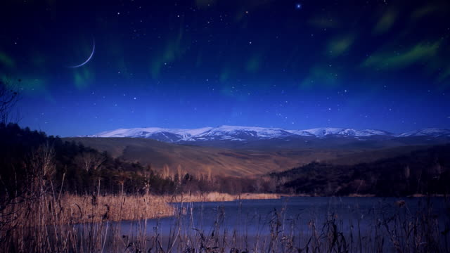 Northern Lights and meteors over lake video