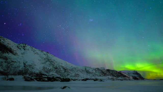 northern lights, polar light or aurora borealis in the night sky over the lofoten islands in norway - aurora boreale video stock e b–roll