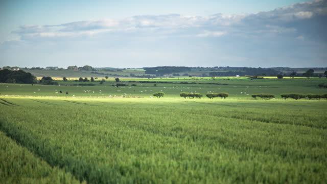 Northumberland Farmland - Time Lapse video