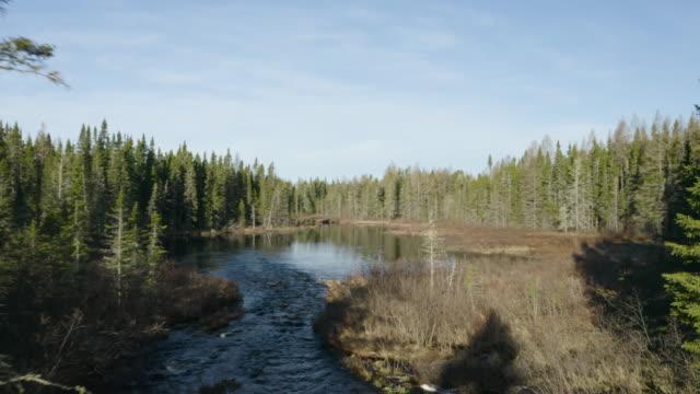 Northwoods Pond Via Drone