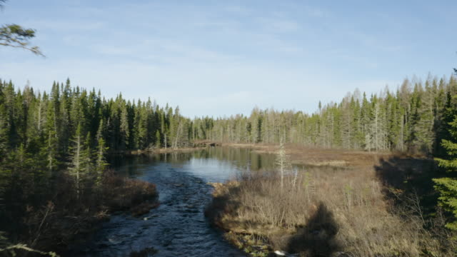 Northwoods Pond Via Drone video