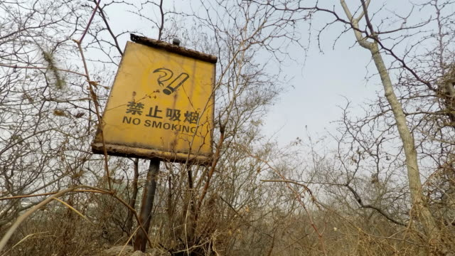 A No-Smoking Warning Board in Mountain Forest