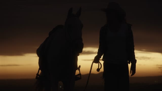 Nothing better to me than to live wild and free 4k video footage of a silhouetted woman going for walk with her horse on a ranch at sunset cowgirl stock videos & royalty-free footage