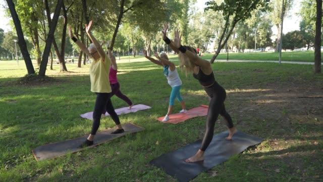 stockvideo's en b-roll-footage met niets kan ons beter laten voelen dan tai chi - fitnessleraar