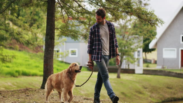 Nothing says companionship like the loyalty of a dog 4k video footage of a handsome young man walking with his dog in the park leash stock videos & royalty-free footage
