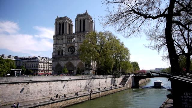 notre-dame all'ile de la cite.   parigi, francia - gargoyle video stock e b–roll