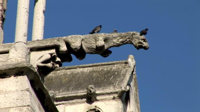 notre dame de paris, statue gargouille e cattedrale - gargoyle video stock e b–roll