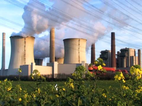 ntsc :石炭火力発電所 - 顕花植物点の映像素材/bロール