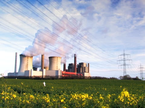 ntsc :発電所 - 顕花植物点の映像素材/bロール