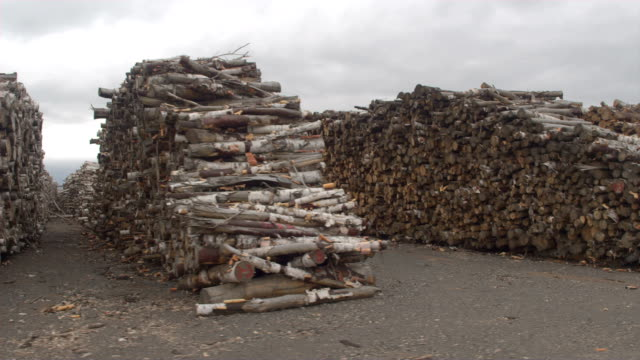 AERIAL: Numerous parallel rows of perfectly stacked beech firewood woodpiles video