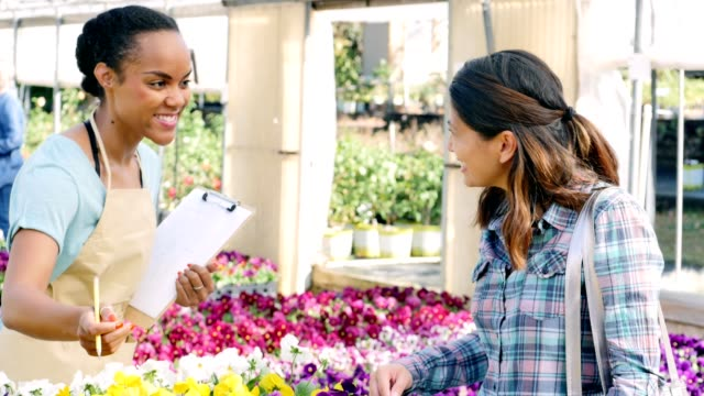 nursery sales associate helps customer select flowers - retail worker stock videos and b-roll footage