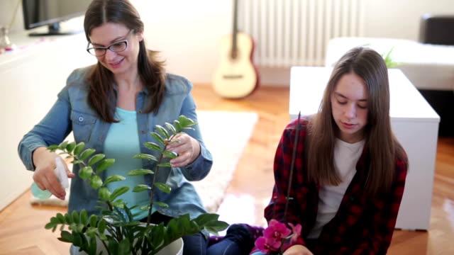 Nourrir les plantes - Vidéo