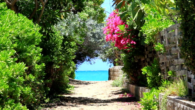 Oahu Island To shoot Lanikai Beach jp201806 stock videos & royalty-free footage