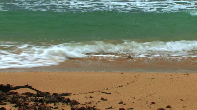 Oahu surf 4 - HD 30F  oceania stock videos & royalty-free footage