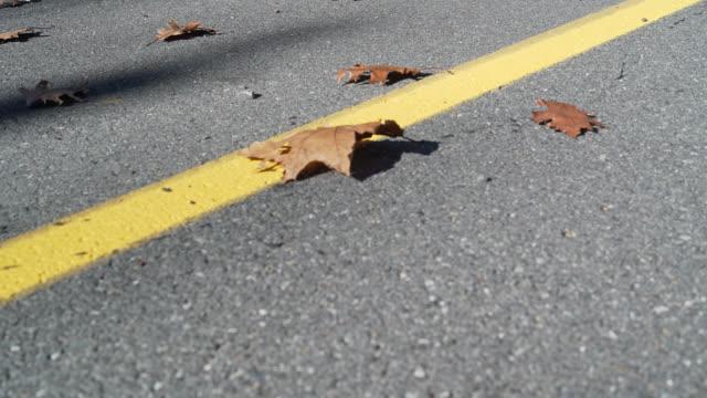 oaken lämnar på vägen - poconobergen bildbanksvideor och videomaterial från bakom kulisserna