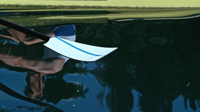 vídeos de stock, filmes e b-roll de lâmina de slo mo remo golpeando a água no sol - remo atividade física