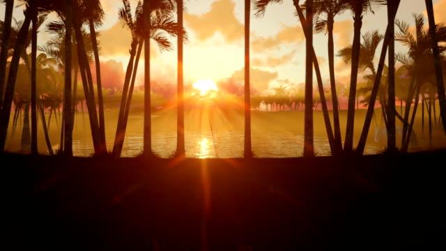oasi nel deserto con laghetto d'acqua e palme al tramonto, inclinazione - libia video stock e b–roll