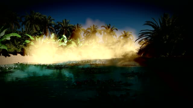Oasis in the night Saharan  oasis at night desert oasis stock videos & royalty-free footage