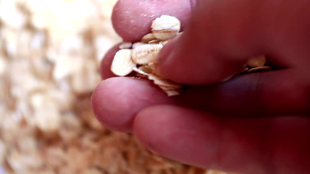 oat flakes in hand video