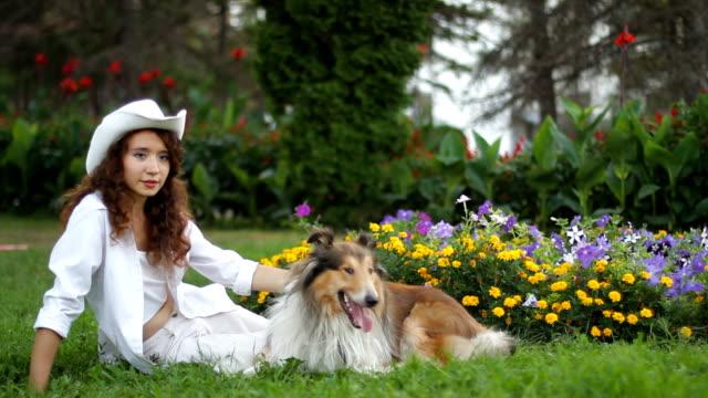 cane obedient - cane addestrato video stock e b–roll