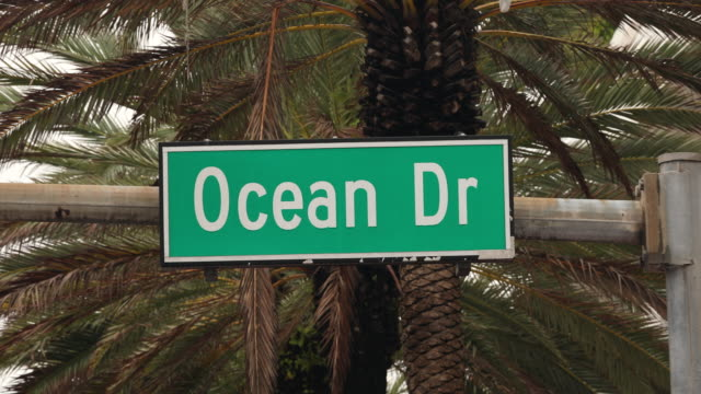 Ocean Drive in Miami by palm trees video