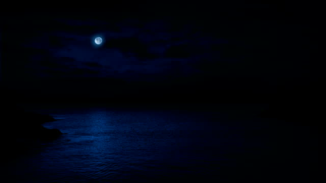 Ocean Landscape With Moon Above video