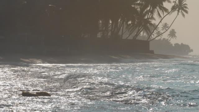 ocean shore with waving blue ocean against palms silhouette - длина стоковые видео и кадры b-roll