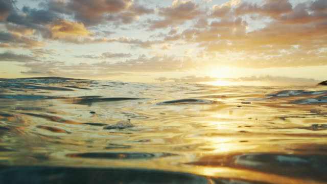 Ocean Sunset video