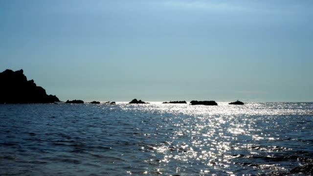 Ocean video