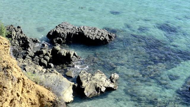 Ocean water around reef video
