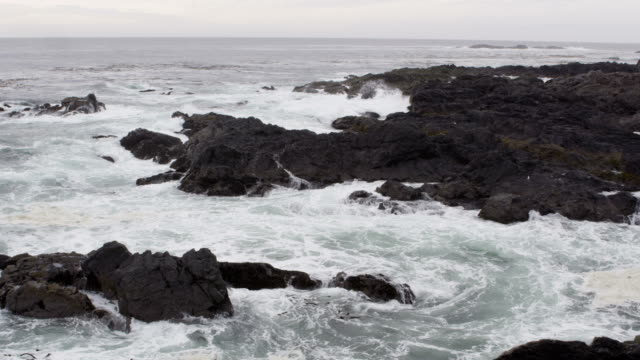 Ocean Waves Black Rocks 1 video
