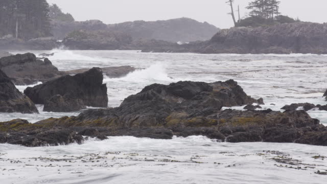 Ocean Waves Black Rocks Shoreline video