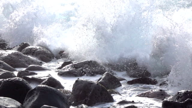SLOW MOTION CLOSE UP: Ocean waves hitting and splashing on round volcanic rocks video