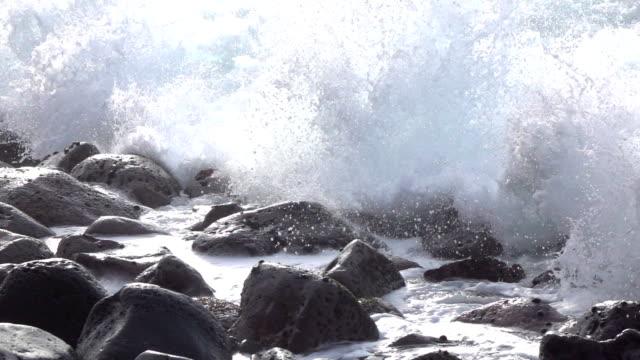 stockvideo's en b-roll-footage met slow motion close-up: oceaan golven slaan en spatten op ronde vulkanische rotsen - rocks sea