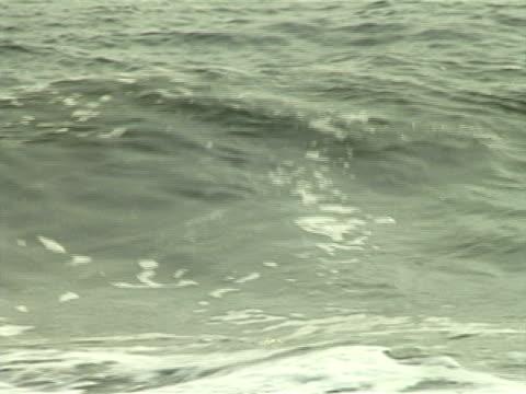 ocean waves - klip uzunluğu stok videoları ve detay görüntü çekimi