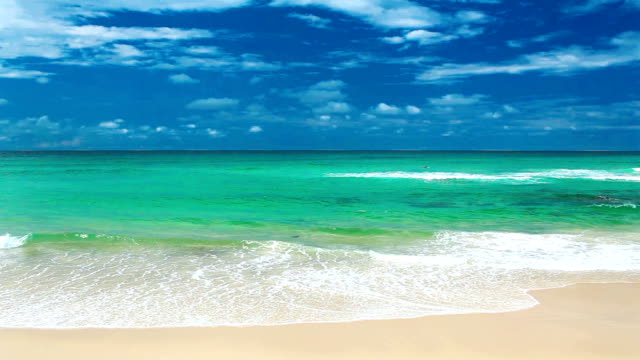 ocean with waves at the Gold Coast beach Australia video