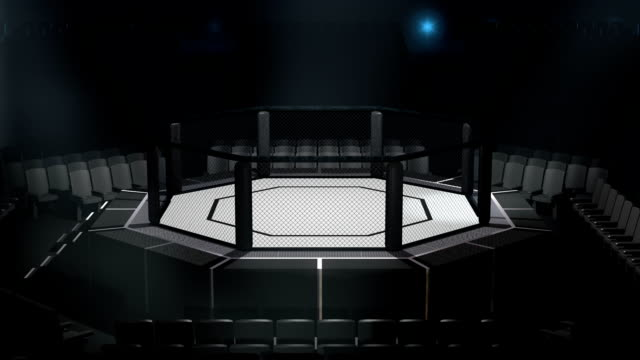 octagon fighting arena - kafes sınırlı alan stok videoları ve detay görüntü çekimi