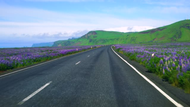 FPV of car driver POV driving along countryside road of Southern Iceland.