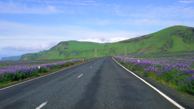 南アイスランドの田舎道に沿って運転車のドライバー pov の fpv. - 叙情的な内容点の映像素材/bロール