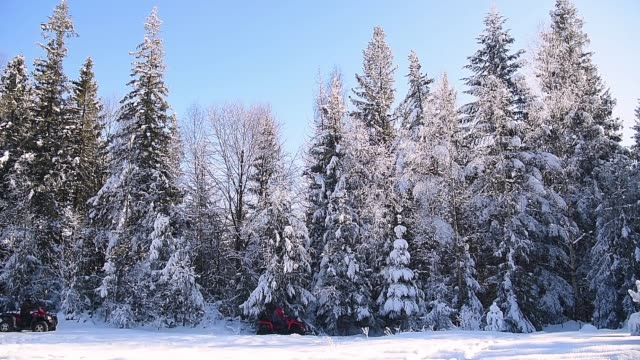 Off road riding ATV mountain forest snow. Extreme winter vacation in the forest.