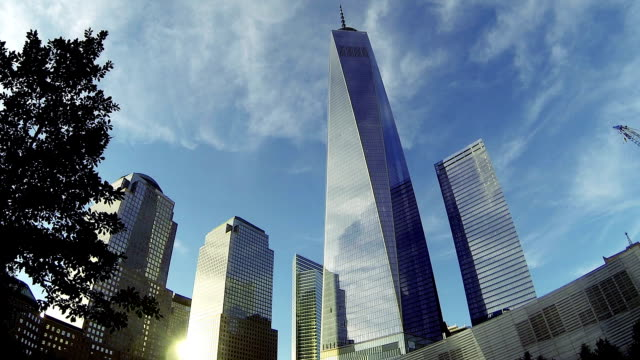 Office building and Freedom Tower in NY Downtown District video