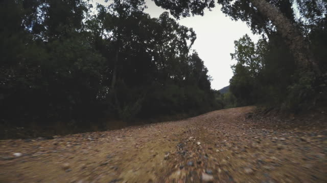 4WD offroad car point of view video