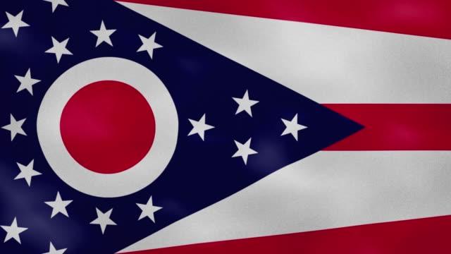 ohio dense flag fabric wavers, background loop - columbus day filmów i materiałów b-roll