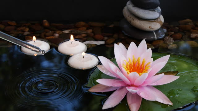 Oil from pipette falling down into water near balance stones, small candles and pink lotus flower