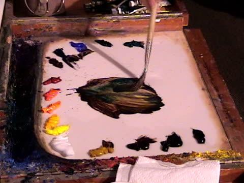 Oil Palette video
