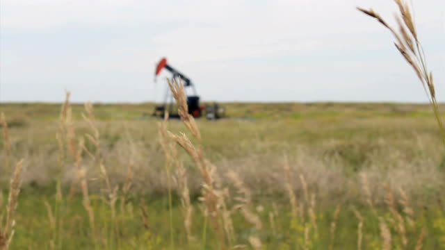 Oil Pump Works On Farm A faithful oil pump works tirelessly on a farm in the middle of the Canadian prairies. prairie stock videos & royalty-free footage