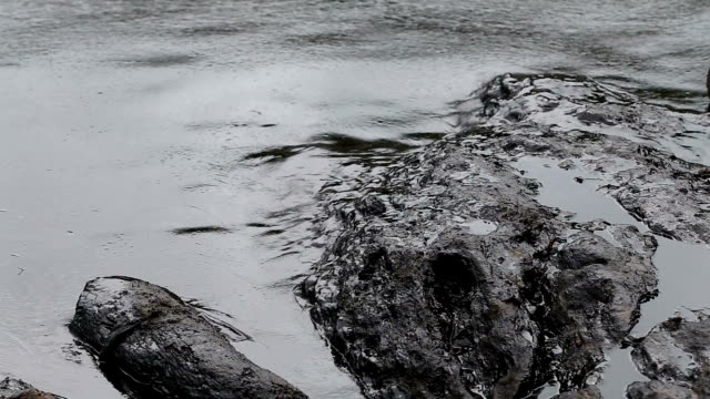 oil spill auf den golf - bucht stock-videos und b-roll-filmmaterial