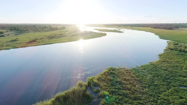 Okavango river. Drone point of view. Aerial shot of okavango river. botswana stock videos & royalty-free footage