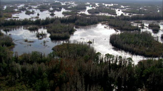 Okefenokee Swamp  - Aerial View - Georgia,  Ware County,  United States video