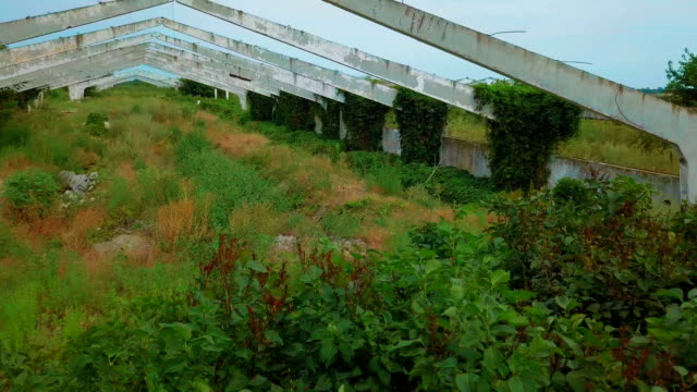 Old abandoned architectural construction at summer field video